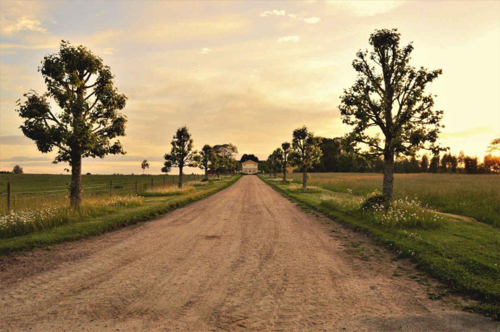 Weg zu Haus im Grünen